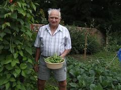 annual plant, agriculture, shrub, farm, flower, garden, soil, plant, gardener, produce, farmworker, crop,