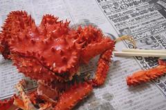 spiny lobster(0.0), homarus(0.0), american lobster(0.0), crab(1.0), animal(1.0), crustacean(1.0), seafood(1.0), invertebrate(1.0), king crab(1.0), food(1.0),