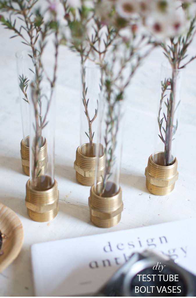 Quick diy test tube bolt vases a pair a spare for Simple glass tubes