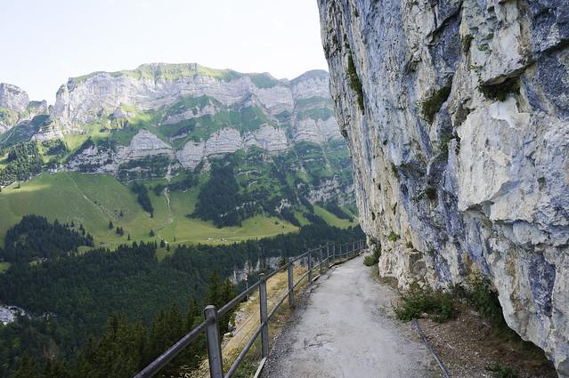 6. Swiss