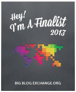 BBex2013 banner