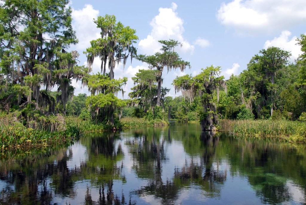 Everglades National Park--Miami, FL