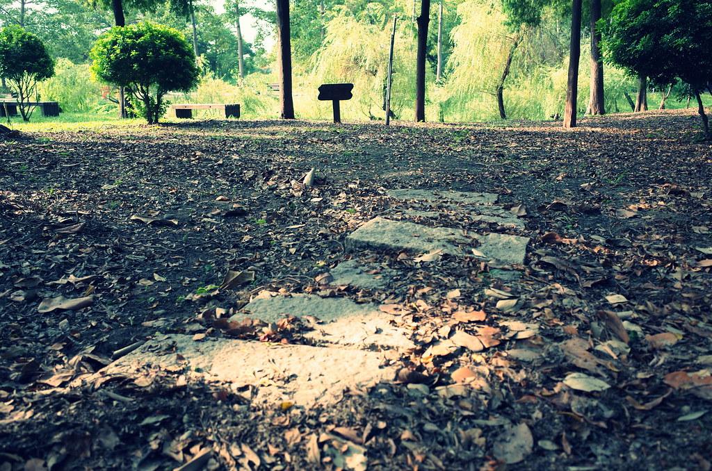 台南巴克禮公園隨拍