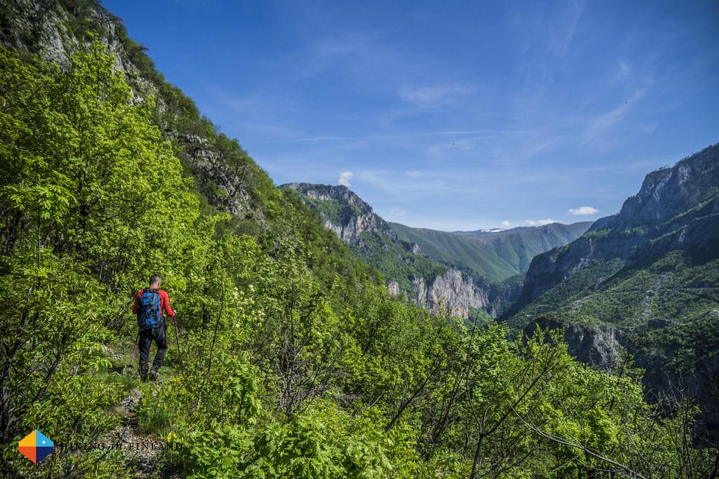 Overgrown trail above the Rakitnica river