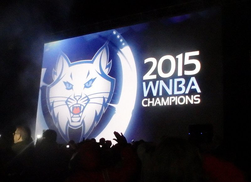 giant 2015 WNBA Champions banner