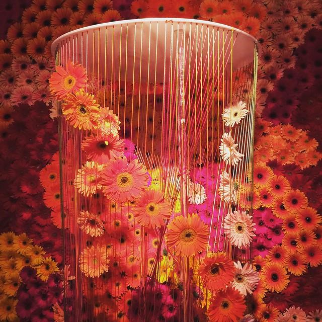 Flower Arrangement #branjil