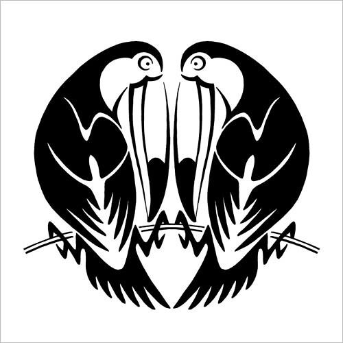 Toucan Couple / Туканья парочка