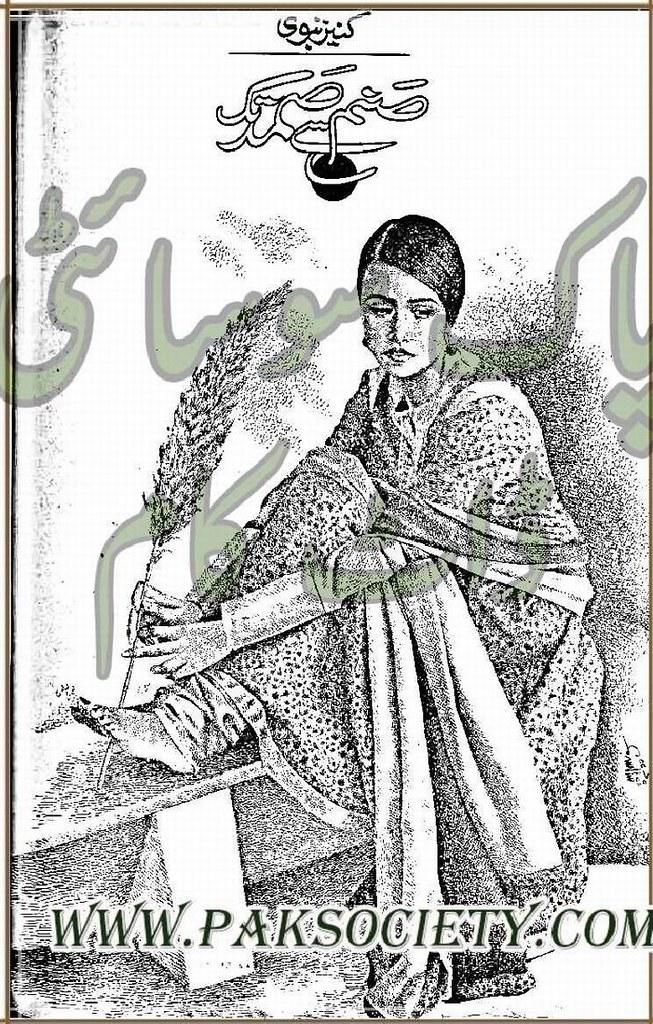 Sanam Se Samad Tak Complete Novel By Kaneez Nabvi