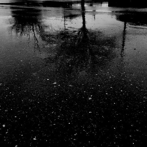 Blacktop and Rain Reflections  1/100
