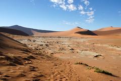 DSC02794 - Namibia 2010 Sossusvlei