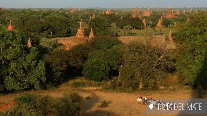 Bagan Myanmar (33)