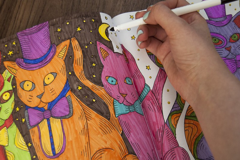cat colouring two