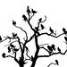 Cormorant roost by Benjamin Joseph Andrew
