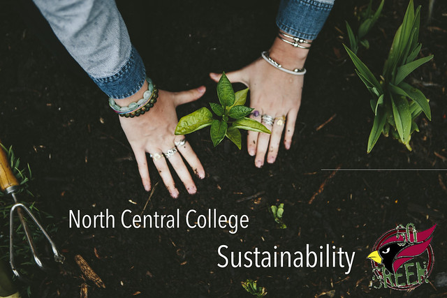 Sustainability at North Central College
