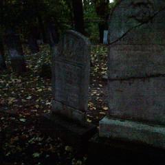 No.05 Binkley 1803 Cemetery
