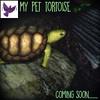 [ free bird ] My Pet Tortoise Coming Soon!