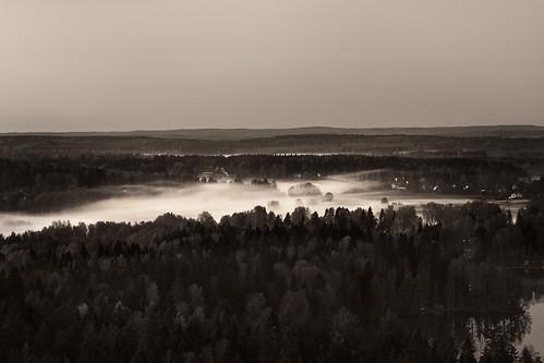 sky mist lake tree monochrome fog forest suomi finland landscape evening view horizon loci hämeenlinna aulanko skrubu tavastehus pni pekkanikrus