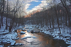 Rock Creek Park 2