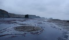 Good morning Saltwick Bay_5397a by Chrissie pixs