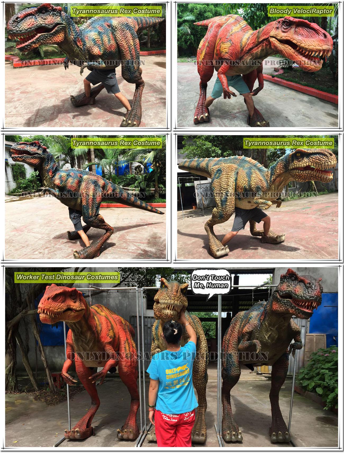 Dinosaur Costumes Display