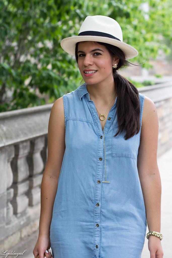 chambray dress, panama hat, leather tote-6.jpg