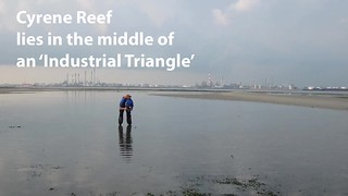 Cyrene Reef lies in the middle of an 'Industrial Triangle'