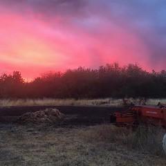 Otis Orchards, WA.