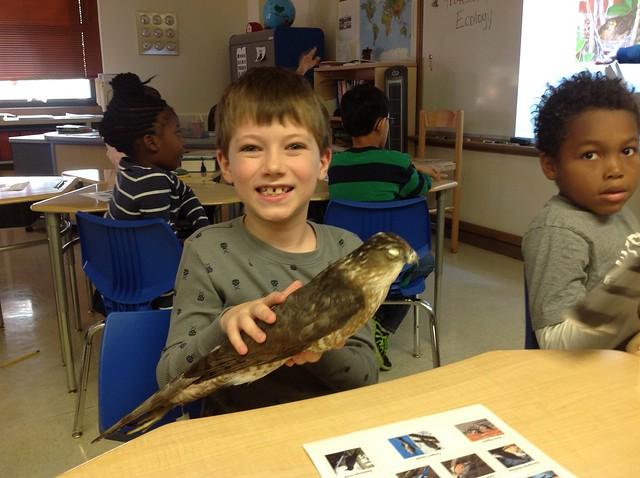 Irving Students Study Urban Birds