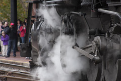 Western Maryland Scenic Railroad  (26)