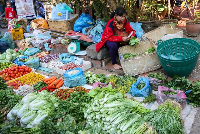 Fresh vegetables in the market, Luang Prabang, laos ルアンパバーン、青空市場の新鮮な野菜たち
