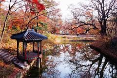 Seoul: The Secret Garden