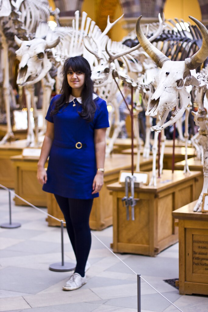 oxford university museum of natural history, dodo, skeleton, tortoise, camel, laila