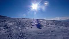 Bieszcady w zimowym słońcu. Srebrzysta Przełęcz