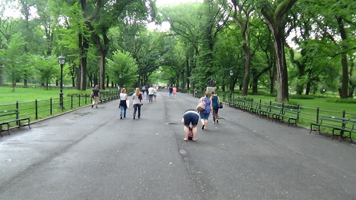 New York Central Park Aug 15 (12)