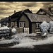Sandhamn in Infrared (2) by Diana Michaels