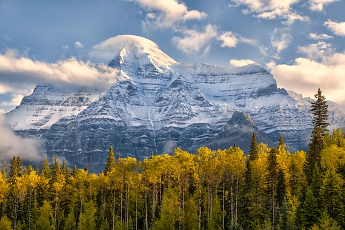 autumn fall britishcolumbia fallfoliage canadianrockies yellowheadhighway mtrobson mtrobsonprovincialpark highestpeakinthecanadianrockies