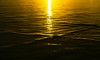 20150807-10_Golden Light at Sunrise
