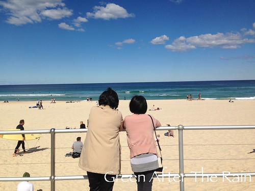 150908e Bondi Beach _22 _TH