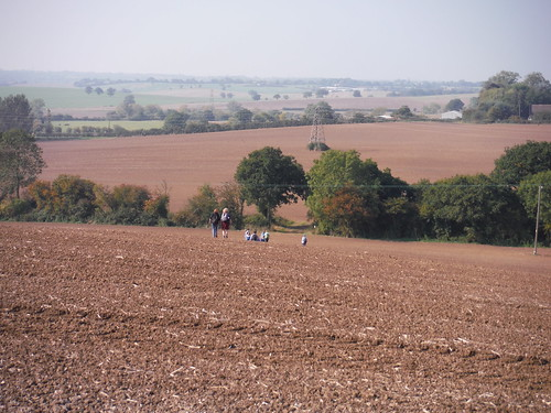 Walkers descending massive field