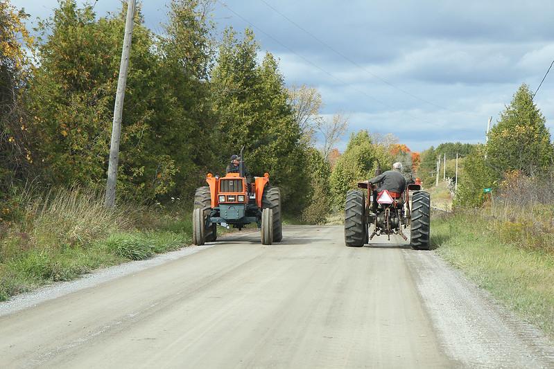 Autumn drive34