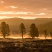 Yellowstone Dawn by trekok, enjoying