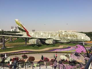 Emirates A380 Miracle Garden Dubai UAE