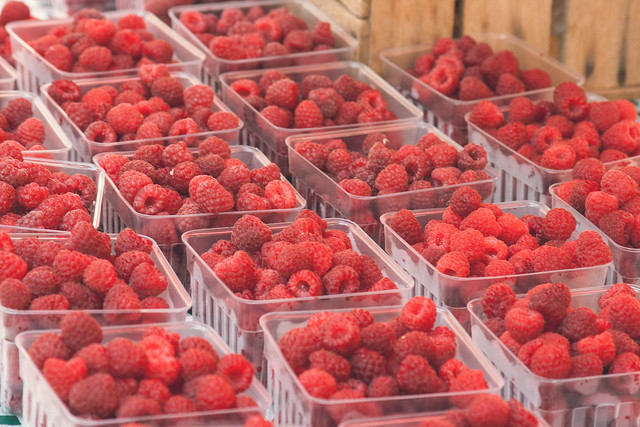 Dodge County Farmers Market • Madison, WI