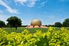 Matrimandir, Auroville, Puducherry...