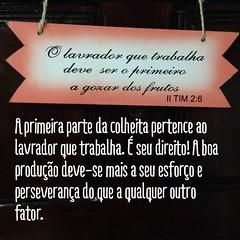 PASTOR GEORGE EMANUEL ·II Tm 2:6-7 O lavrador que trabalha deve ser o primeiro a gozar dos frutos.7 Considera o que digo, porque o Senhor te dará entendimento em tudo. Tendo o atleta de competir com honestidade, o lavrador, por sua vez, tem de trabalhar a