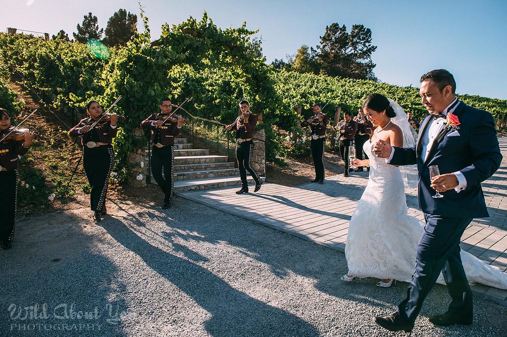 nella-terra-wedding073