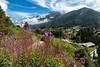 Summer in Zermatt
