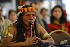 Caso 12.979 - Pueblos indígenas en aislamiento voluntario Tagaeri y Taromenani, Ecuador (FONDO)