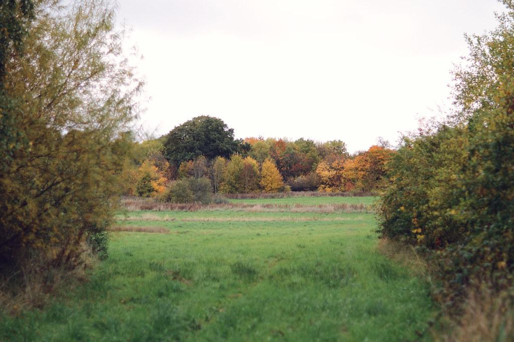 autumnwalk10