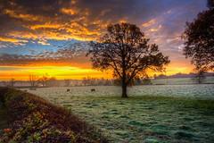 Sun Rise Over Dunmow
